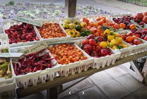عکس چگونه تجارت محلی شما می تواند یاری کننده باشد